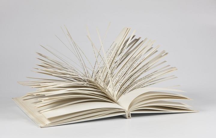 Raymond Queneau - Cent Mille Milliards de Poèmes