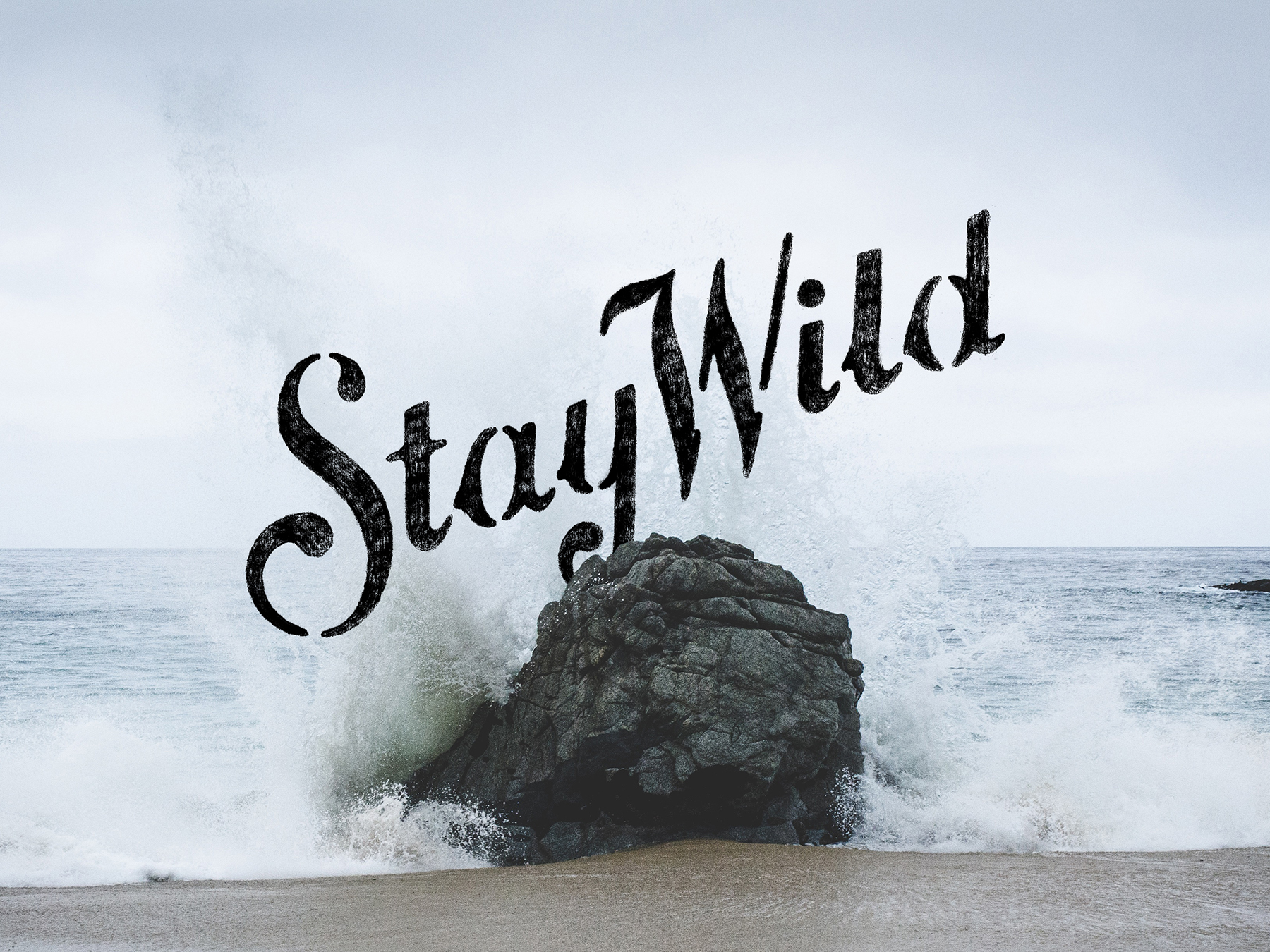StayWild_Will_Langenberg
